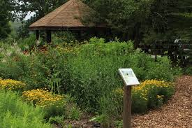 native plant list gardens friends of goodwin forest
