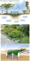 19 best landsxape graphics images on pinterest landscaping