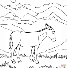 donkeys coloring pages free coloring pages