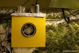 extracteur chambre de culture la ventilation de la culture de cannabis du growshop alchimia