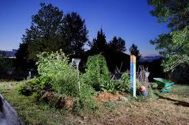 Urban Gardens Denver - urban gardens u2014 matthew staver photography