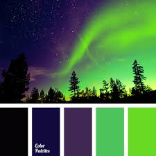 Colors That Match With Purple Black Bright Green Bright Light Green Canonical Aubergine