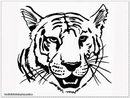 coloring pages tigers picture excellent coloring