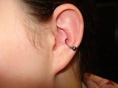 conch piercing cuff dorje adornments inner conch piercing by nick jewelry from
