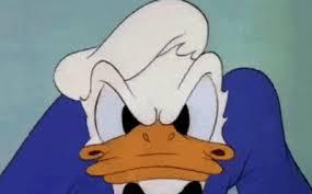 Donald Duck Meme - donald duck album on imgur