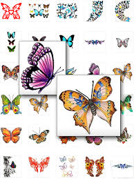 collection of 25 colorful butterfly designs
