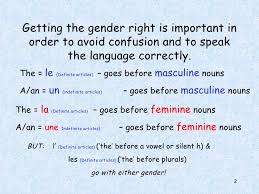 french masculine or feminie
