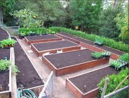 Best Garden Layout Best 25 Vegetable Garden Layouts Ideas On Pinterest Garden