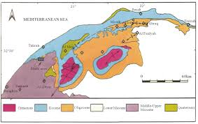 Map Of Al Possible Geological Reason For The Missing Of The Oligocene