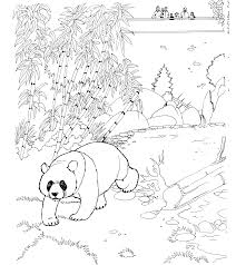 panda bear coloring pages getcoloringpages com