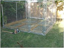 backyards amazing 5 x kennel pit bull chat forum 133 dog play