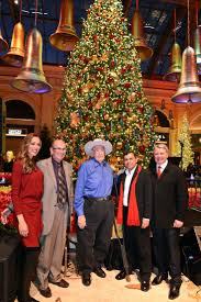 21 best bellagio conservatory christmas trees images on pinterest
