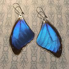 blue earrings blue morpho resin earrings top wing insectsy real butterfly