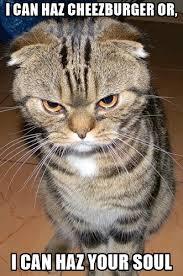 Cheezburger Meme Creator - i can haz cheezburger or i can haz your soul angry cat 2 meme