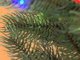 just cut pre lit artificial trees