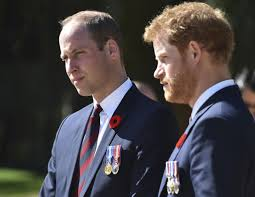 princes william and harry defend queen elizabeth shame paparazzi