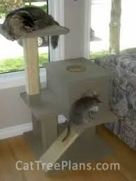 build cat tree house how to find free plans for building your