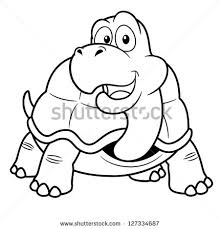 tortoise color stock images royalty free images u0026 vectors