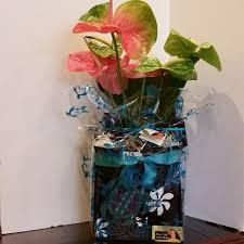 island gift basket same 68 best hawaii s gift baskets images on gift basket