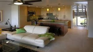kitchen small condo kitchen ideas small condo living room design