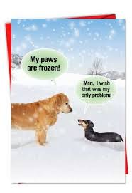 dogs in snow funny holiday greeting card dog cards