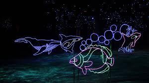denver zoo lights hours denver zoo lights adds yeti underwater adventure to winter