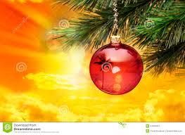 tropical christmas palm tree stock photo image 54609424