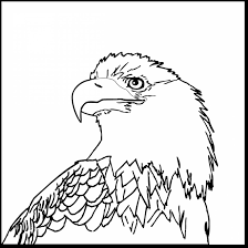 great bald eagle head coloring page with eagle coloring page