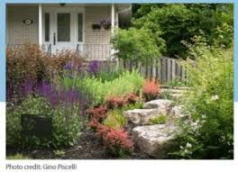 low water use landscapes ucce master gardeners of san joaquin county