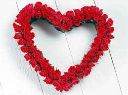 Love Flowers Love Flowers Wallpapers 10