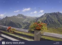 Banisters Flowers Austria Montafon Done Shrill Mountain Restaurant Schafberghüsli
