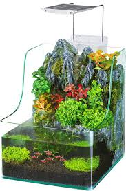 fish tanks aquariums you ll wayfair
