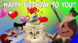 singing happy birthday happy birthday to you song by singing cats