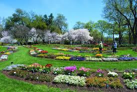 garden dallas botanical garden elegant white rock say yes to