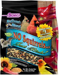 bird lover u0027s blend no squirrels u2026just birds with sunflower seeds