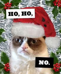 Christmas Grumpy Cat Meme - gifts for grumpy cat fans grumpy cat and cat