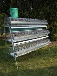 gabbie per gabbie per conigli fattrici e ingrasso a roma kijiji annunci di