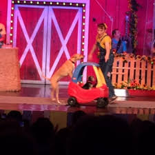 Comedy Barn In Pigeon Forge Tennessee The Comedy Barn 47 Photos U0026 87 Reviews Performing Arts 2775