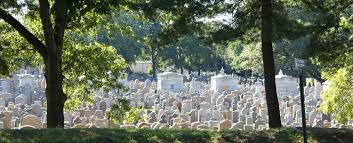 boston cremation cemetery services cremation services boston massachusetts