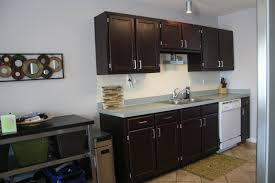 cool white kitchen cabinet paint color pictures all about house