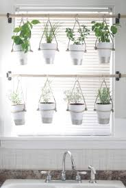 Window Sill Garden Inspiration Diy Indoor Hanging Herb Garden For More Ideas Checkout Http