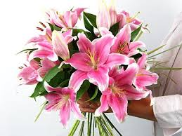 pink lilies send sensation lilies for uk flower delivery from clare florist