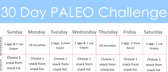 diary of a fit mommy30 day paleo challenge diary of a fit mommy