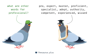 resume thesaurus experience synonyms professional synonyms https thesaurus plus synonyms professional