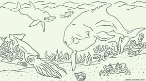 blue dolphins coloring pages