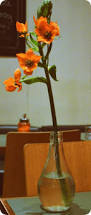 Wohnzimmer Cafe Karlsruhe 26 Besten Karlsruhe Bilder Auf Pinterest Karlsruhe