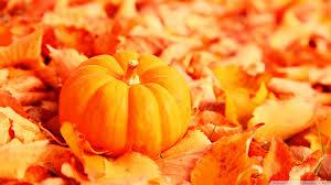 cute autumn backgrounds pumpkin and autumn leaves hd desktop wallpaper high definition