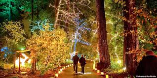 Zoo Lights Columbus Oh by 10 Best Christmas Light Displays In Portland 2016