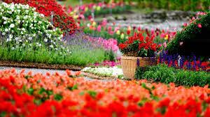 pretty flower garden ideas beautiful flower garden we cool flower garden home design ideas