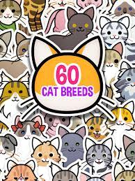 cat photo album my cat album pet sticker book on the app store